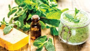 Natural Herb for Cosmetics From RDHealthIngredients