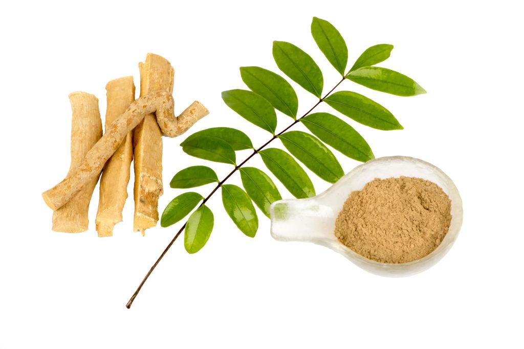 Tongkat Ali Root Extract Powder