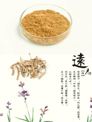 BT-11 Polygala Tenuifolia Extract RDHealthIngredients