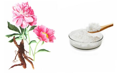 White Peony Root Extract Paeoniflorin RDHealtingredients