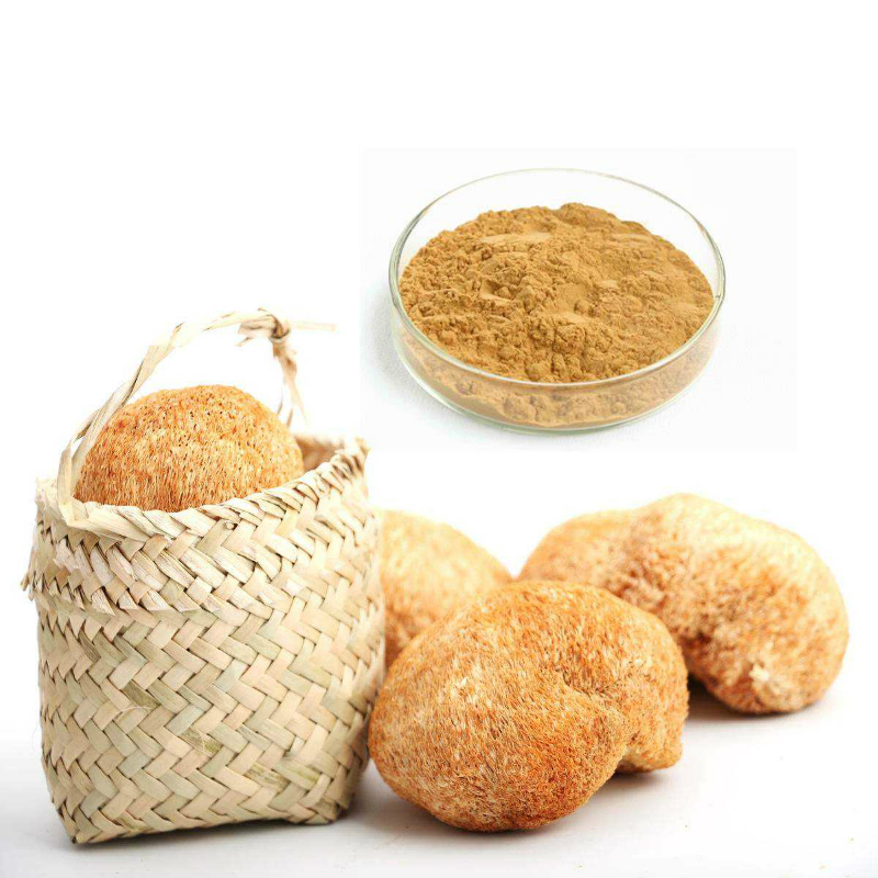 lion's mane extract from RDHealthIngredients