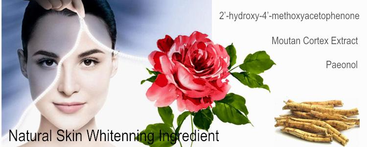 Buy Moutan Cortex Extract- Paeonol From RDHealthIngredients
