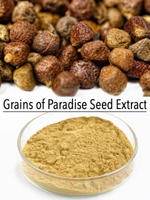 grains of paradise extract